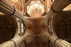 Kathedraal Salamanca,Spanje